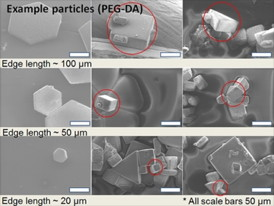 Shown here are examples of micro shapes polymerized by ultraviolet light in polyethylene glycol diacrylate (PEG-DA).