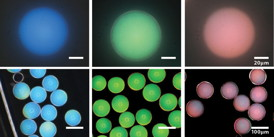 These photonic microcapsules have been prepared to produce blue, green, and red structural colors and imaged using bright-field (top) and dark-field (bottom) optical microscopy. Images courtesy of Jin-Gyu Park.