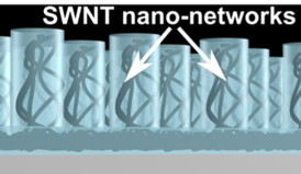 The high degree of control of the method enables production of highly efficient nanotube networks with a very small amount of nanotubes compared to other conventional methods, thereby strongly reducing materials costs.