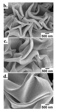 These are close-up images of the new shrink wrap nanostructures taken with a scanning electron microscope. Each image depicts the shrink wrap's surface with a fixed amount of nickel (5 nm) and different thicknesses of gold in the metal coating. The top is 10 nm thick. The middle is 20 nm thick. The bottom is 30 nm thick. The black arrows in the top image indicate a nanogap.