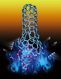 This is a carbon nanotube growth.