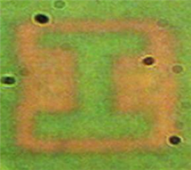 Image of the Illinois �I� logo recorded by the plasmonic film; each bar in the letter is approximately 6 micrometers.