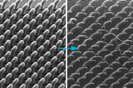 New process developed by MIT�s John Hart and others can produce arrays of 3-D shapes, based on carbon nanotubes growing from a surface. In this example, all the nanotubes are aligned to curve in the same direction.