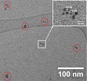 Cryogenic TEM micrograph of gold nanoparticles (Au-NP) in DES-solvent. Sputtering duration 300 s. Red circles show the different domains of self-assembled Au-NPs. The inset shows an enlarged image of one particular domain of self-assembled Au-NPs.