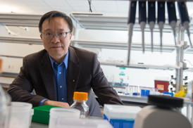 Gang Bao will bring his expertise in precision genome engineering, nanotechnology and molecular imaging to Rice's Department of Bioengineering through a grant from the Cancer Prevention and Research Institute of Texas. Credit: Jeff Fitlow/Rice University