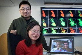 Jun Wang (sitting), Christopher Eng (standing), Jiajun Wang (left, laptop screen), and Liguang Wang of Brookhaven National Laboratory used transmission x-ray microscopy combined with spectroscopy to produce the colored maps shown on the large screen. These maps reveal the structural expansion (and the resulting cracks/fractures) and chemical composition changes that occur as sodium ions (Fe, green) are added to and removed from iron sulfide (FeS, red) during the battery's first discharge/charge cycle. The pristine iron sulfide (box in upper left) does not return to its original state after this cycle, as some sodium ions remain trapped in the core (box in lower right). As a result, there is an initial loss in battery capacity.