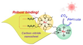 Figure.  Schematic of solar fuel production by semiconductor photocatalyst
