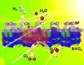 Photocatalytic overall pure-water splitting using the 2-D heterostructures of BP/BiVO4 without any sacrificial agents under visible light irradiation.