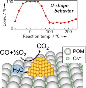 New catalyst consisting of gold nanoparticles supported on a Keggin-type polyoxometalate (POM) with a cesium salt. The structure showed high activity and stability for CO oxidation; trace amounts of water were found to be essential to the function of the material. Catalytic activity showed a unique, U-shaped dependence on temperature.
