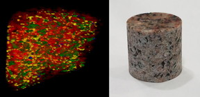 The neutron interferometer can scan the interior of thick objects, such as this chunk of granite, providing enough detail to show the four types of rock that are mixed within it.