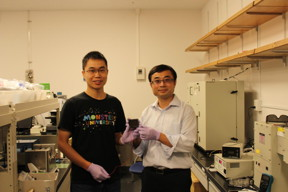 Dr. Zonghao Liu (left) and Professor Yabing Qi (right) with the 5 cm × 5 cm perovskite solar module that they developed in their lab at OIST.