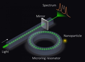 An exceptional surface-based sensor. The microring resonator is coupled to a waveguide with an end mirror that partially reflects light, which in turn enhances the sensitivity.