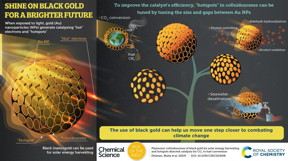 Use of black gold can get us one step closer to combat climate change.