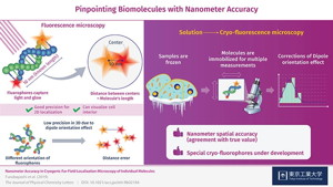 Figure 1. Schematic illustration of a new approach in fluorescence microscopy for biomolecules with nanometer-scale precision
