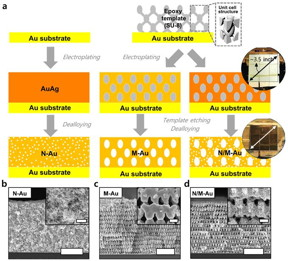 Fabrication procedures of various gold nanostructures through proximity-field nanopatterning (PnP) and electroplating techniques.
