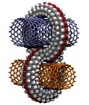 Damian Gregory Allis - Crimp junctions for perpendicular carbon nanotube scaffolding