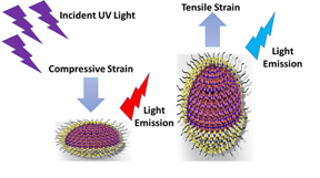 Caption: Illustration used to visualize how compressive and tensile strain can change the emission wavelength of the quantum dots.