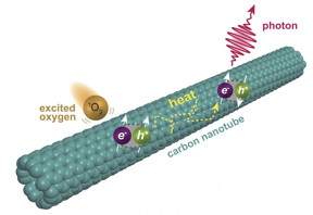 Chemists at Rice University have discovered a second level of fluorescence in single-walled carbon nanotubes. The fluorescence is triggered when oxygen molecules excited into a singlet state interact with nanotubes, prompting excitons to form triplet states that upconvert into fluorescing singlets. (Credit: Illustration by Ching-Wei Lin/Rice University)